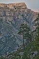 Lonesome Ridge WSA (9469154693).jpg