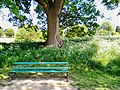 Long shot of the bench (OpenBenches 6171-1).jpg