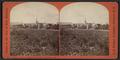 Looking south from suspension bridge, Binghamton, N.Y, by Walker, L. E., 1826-1916.png