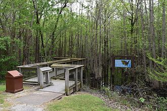 Monroe County, Arkansas - Headwater swamp at the entrance to Louisiana Purchase State Park, southern Monroe County