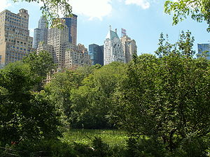 English: Lower Central Park at 1:00 p.m. Photo...