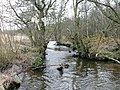 Luggie Water - geograph.org.uk - 1739735.jpg