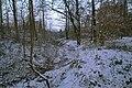 Lurup - frosen Scheetplatsgraven.jpg