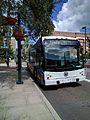 Lynx Lymmo bus 163 (30365230705).jpg