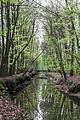 Münster, Wolbeck, Wolbecker Tiergarten, Angel -- 2014 -- 7132.jpg