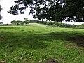 Maestorglwyd Hill - geograph.org.uk - 471055.jpg