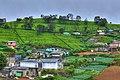 Mahagasthota, Nuwara Eliya, Sri Lanka - panoramio.jpg