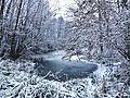Marais gelé et enneigé à Savoie Hexapole (2017).JPG