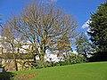 Marsden Hall - geograph.org.uk - 402304.jpg