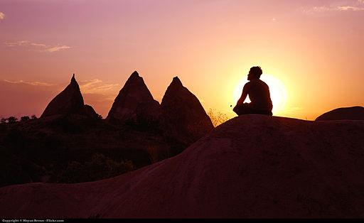 Meditation (7912377858)