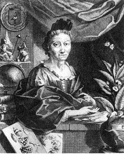 An occupational portrait of Maria Sibylla Merian (c. 1700, copperplate by Jacobus Houbraken from a portrait by Georg Gsell). Her status as a scientist is emphasised by the pile of books next to her. The globe and the prints draw attention to her accomplishments. The pair of engraving needles and the emblem of her father make a point of her ancestry. Merian Portrait.jpg