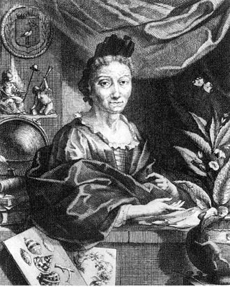 Maria Sibylla Merian - Maria Sibylla Merian c. 1700, Copperplate by Jacobus Houbraken from a portrait by Georg Gsell