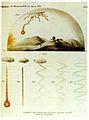 Meteorit Hrascina 1751.jpg