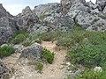 Mgarr, Malta - panoramio (118).jpg