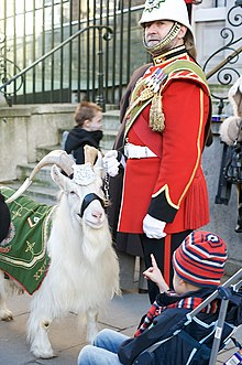 White goat wearing metal headdress and green coat, stands beside soldier in red ceremonial uniform, and a white helmet; a child in a push-chair is pointing at the goat