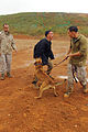 Military working dogs, handlers build relationship 131024-M-GE767-004.jpg