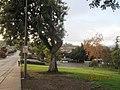 Monterey Park, CA, USA - panoramio (181).jpg