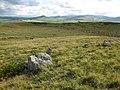 Moorland near Llyn Alwen - geograph.org.uk - 877153.jpg