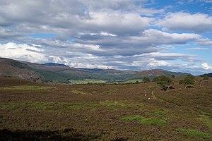 Braemar - Morrone Birkwood Nature Reserve