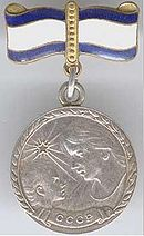 Motherhood Medal2.JPG