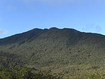 Mount Hamiguitan peak.JPG