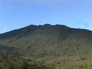 Mount Hamiguitan - Image: Mount Hamiguitan peak