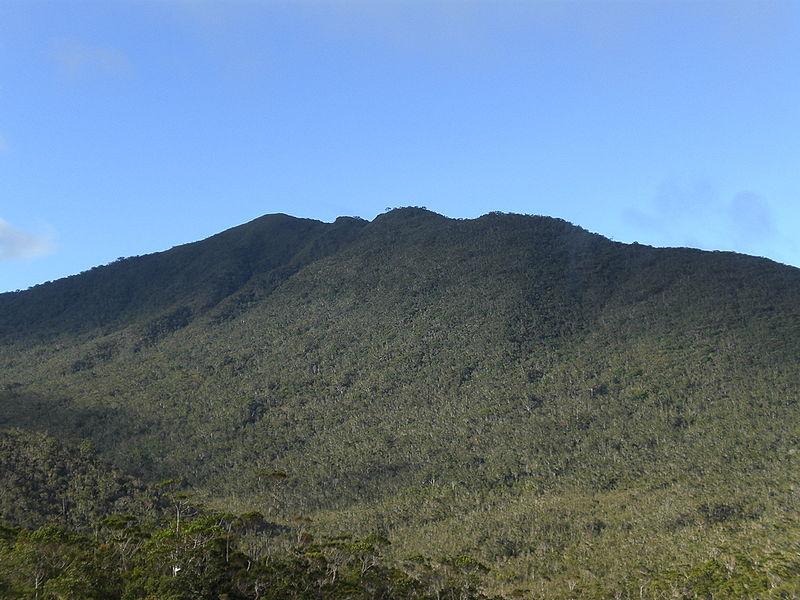 Mount Hamiguitan peak
