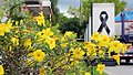 Mourning-for-Bhumibol Narcis-flowers-at cremation-time 20171026 IMG 9699.jpg