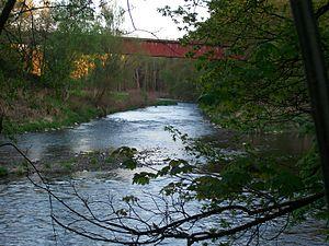Chemnitz (river) - Image: Muldentalbahn bei Chemnitzmündung