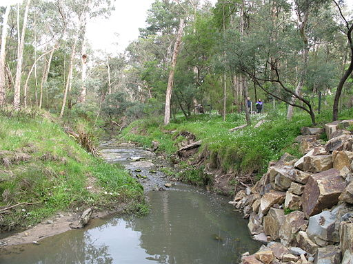 Mullum Mullum Creek through Yarran Dheran