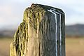Murlough post, County Down, January 2012.jpg