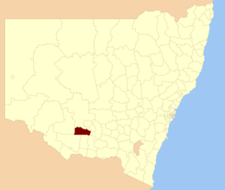Murrumbidgee Shire Local government area in New South Wales, Australia