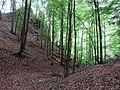 Nad kaňonom - panoramio.jpg