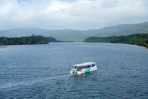 Nakama River Iriomote Okinawa Japan01bsf