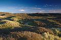Nationaal Park Zuid-Kennemerland (24).jpg