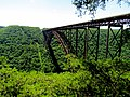New River Gorge Bridge WV 8467 (7534800776).jpg