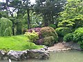 New York Botanical Garden 11.jpg