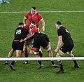 New Zealand national rugby 20191101d24.jpg