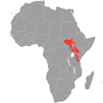 Kalenjin people - Areas where Nilotic languages are spoken.