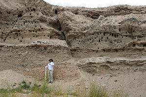 Fault (geology) - Normal fault in the Bozeman Group near the Harrison Reservoir, Montana