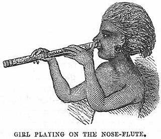 Nose flute musical instrument