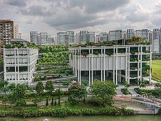 Oasis Terraces Hospital
