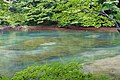 Oirase Mountain Stream at Lake Towada - Nenokuchi, Aomori - DSC01048.jpg