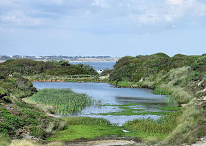 Hengistbury Head - Old Ironstone Quarry, Hengistbury Head