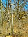 Old Utility Pole - panoramio.jpg