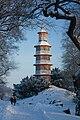 Oranienbaum Pagoda k1.jpg