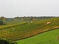 Osterfingen 13.10.2008 13-11-38.jpg