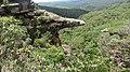 Ouro Preto - State of Minas Gerais, Brazil - panoramio (84).jpg
