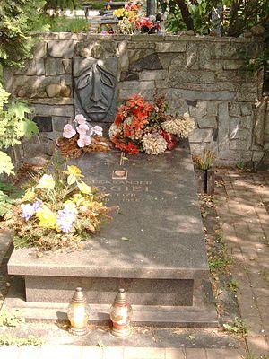 Aleksander Fogiel - Grave of Aleksander Fogel at the Communal Cemetery in Dołach, in Łódź in 2007