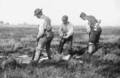PSM V66 D290 Manual ditch digging on the shrewsbury river marshes 1904.png